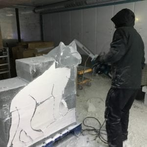 Wolf3 1 300x300 - The Lone Wolf Ice Bar, Newcastle