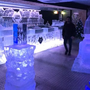 wolf11 1 300x300 - The Lone Wolf Ice Bar, Newcastle