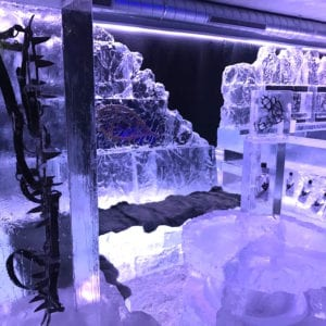 wolf12 1 300x300 - The Lone Wolf Ice Bar, Newcastle