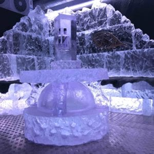 wolf13 1 300x300 - The Lone Wolf Ice Bar, Newcastle