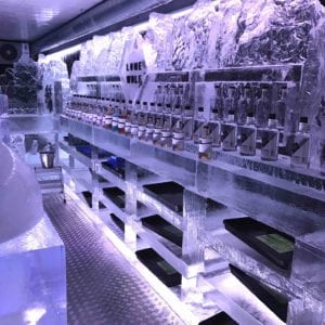 wolf16 1 300x300 - The Lone Wolf Ice Bar, Newcastle