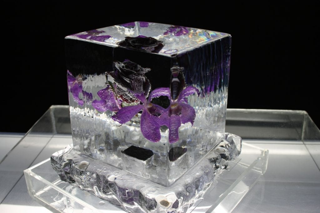 Rose encased in ice sculpture for wedding